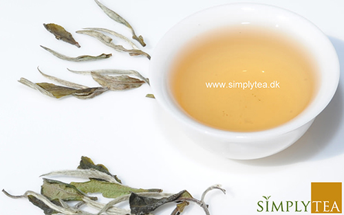 Økologisk Moonlight hvid te