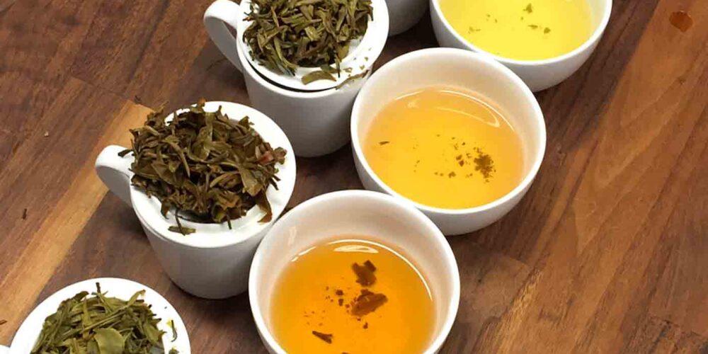 Lær at smage på te - Tekurser for begyndere