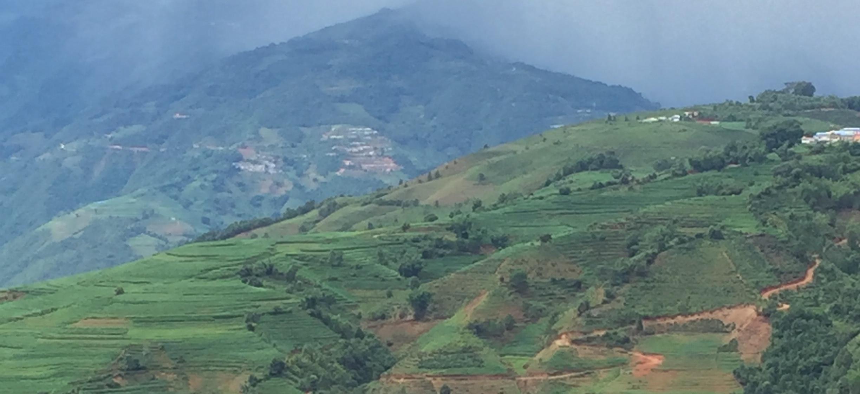 En rejse gennem Yunnan's regnskovi regnsæsonen